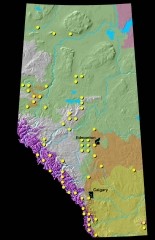 Lodgepole Pine Distribution Map